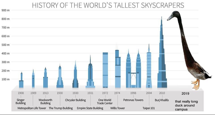 самая высокая утка в мире мем