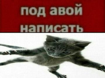Азамат Айталиев