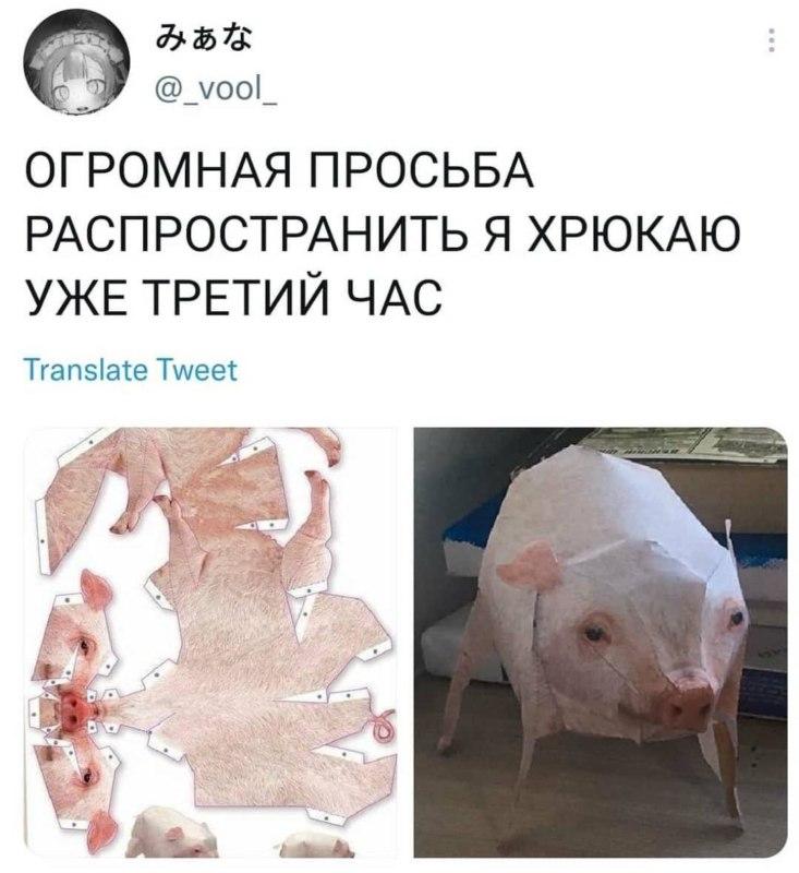 Бумажная свинка