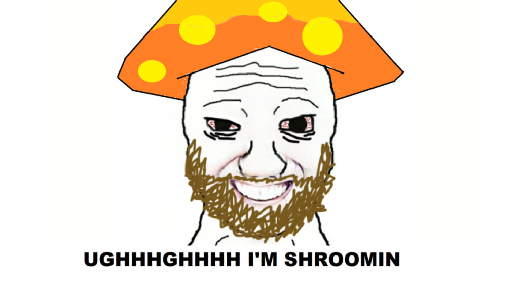 шрумер shroomer