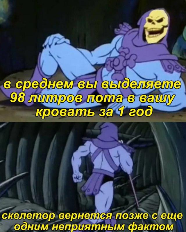 мемы скелетор и факты