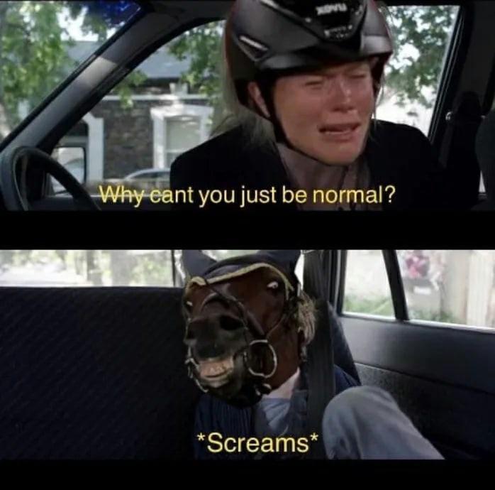 Лошадь отказалась ехать