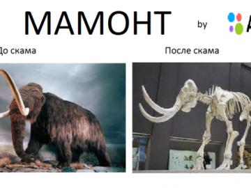 Заскамил мамонта