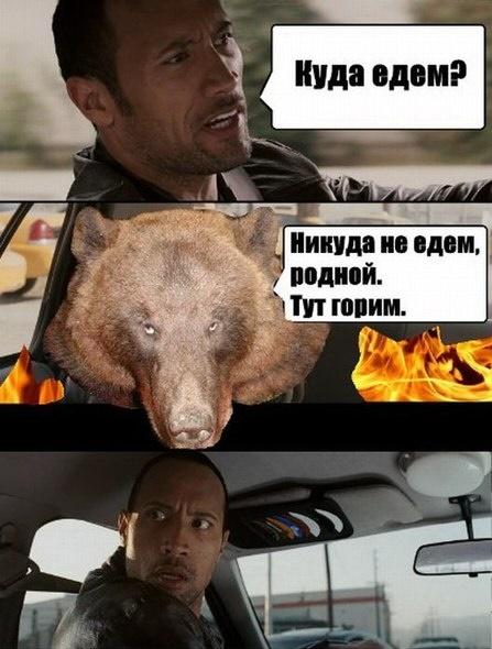 Дуэйн Джонсон мем, Куда едем мем, The Rock Driving
