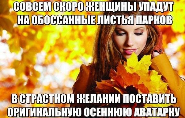 осень мем, мемы про осень, тупая пизда, фото с листьями, осенние фото