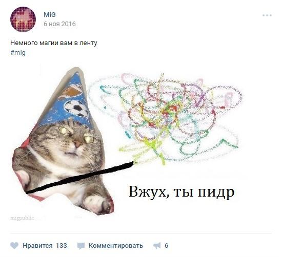 вжух, кот вжух