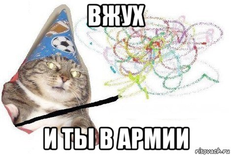 кот вжух