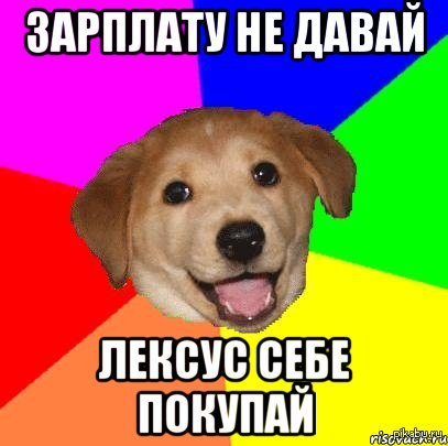 Собака-советчица (Advice dog)