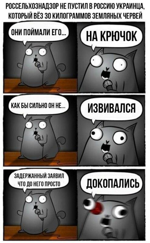 Игра в кота которого бьют