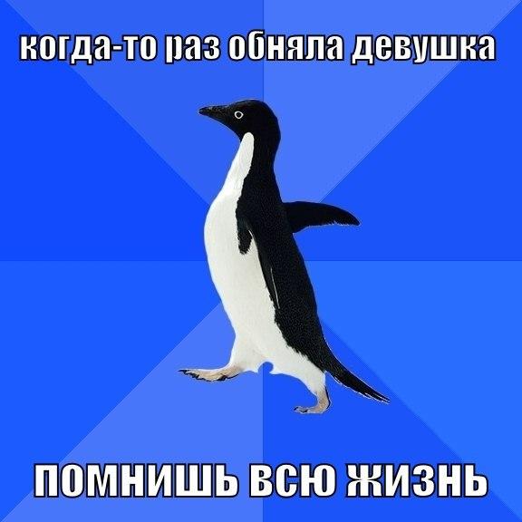 Пингвин-социофоб