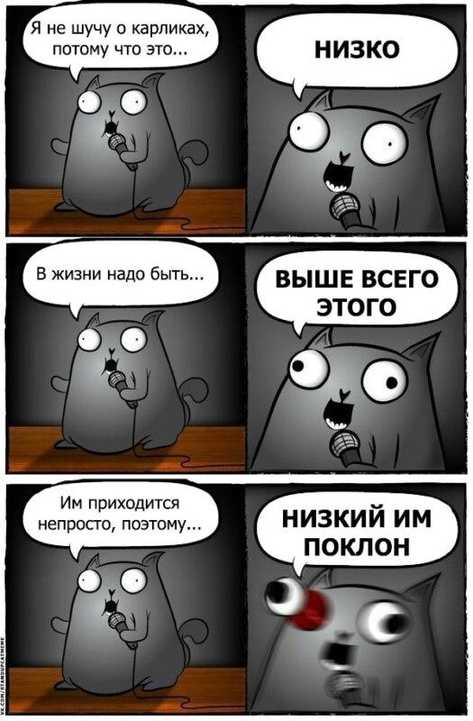 стендап кот, кот стендапер, комикс с котом-стендапером, кот-стендапер приколы, стендап-кот комикс, кот-стендапер комикс, кот стендапер шаблон
