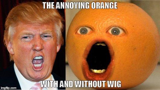 апельсин разговаривает