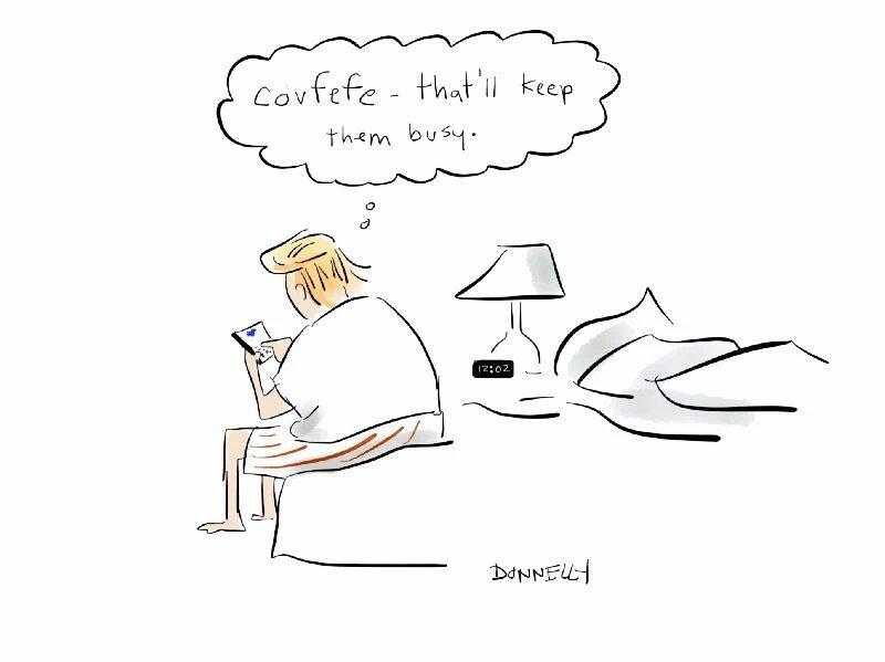 ковфефе трамп (2)