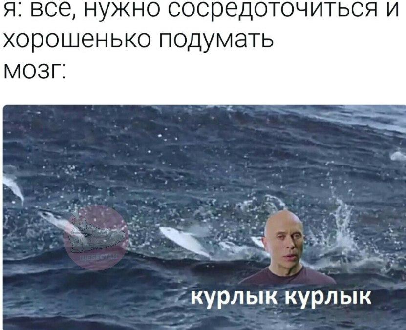 мем дружко шоу 5