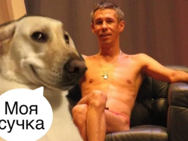 собака панин