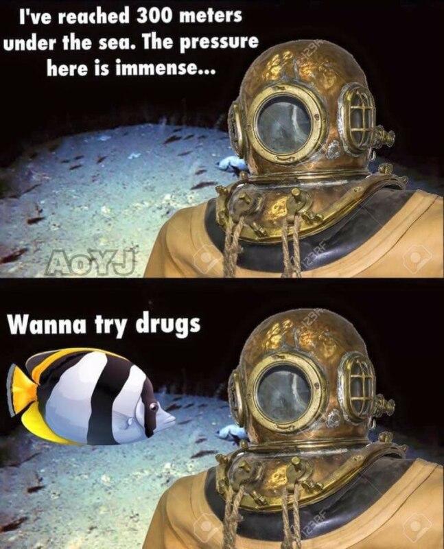 Я на глубине 300 метров Здесь на меня оказывается сильнейшее давление, Я на глубине 300 метров, на меня оказывается сильнейшее давление, водолаз мем, дайвер мем, водолаз и рыбка, водолаз в старом скафандре мем, аквалангист мем, аквалингист и рыбка мем, комикс с рыбкой и аквалангистом, wanna try drugs, откуда мем с аквалангистом и рыбкой, откуда мем с водолазом и рыбкой