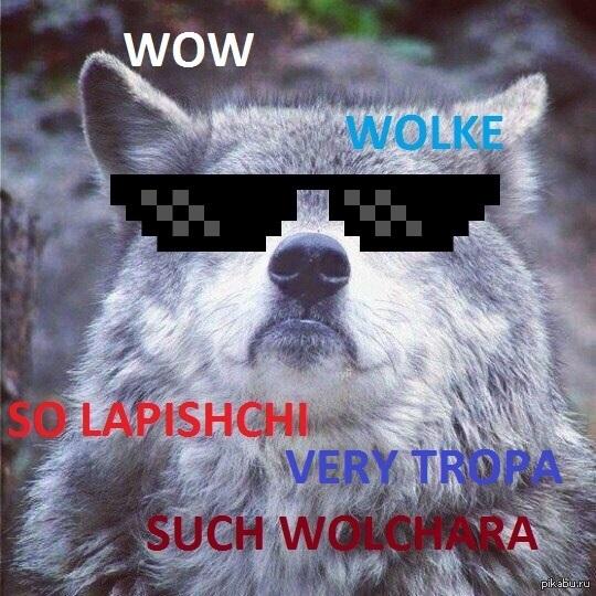 Шерстяной волчара, Боже как я хорош, шерстяной волчара боже как я хорош, как я хорош, как я хорош как мощны мои лапищи, как мощны мои лапищи, мем со стаей волков, стая волков мем, волки в снегах мем